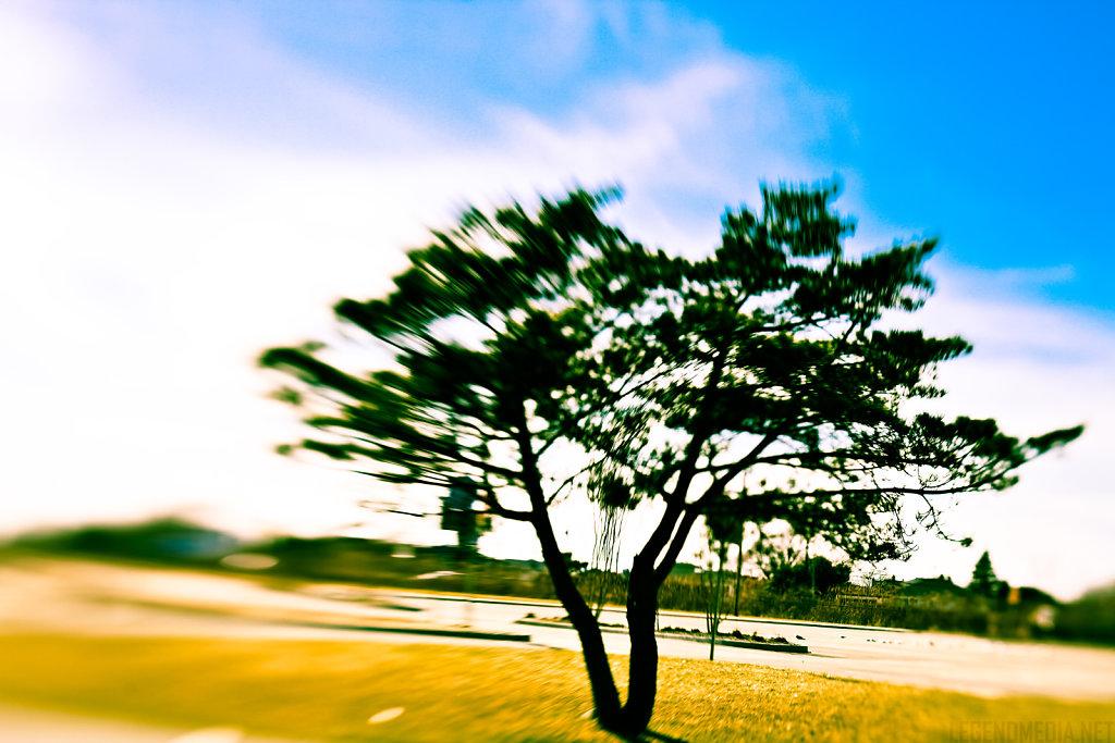 IMG-9927-Edit.jpg